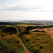 Større naturoplevelser venter danskerne: 6 ting du kan opleve i naturnationalparkerne