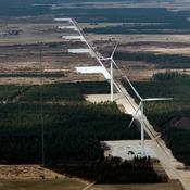 Miljøminister frikender vindmøller stik mod forskeres konklusion