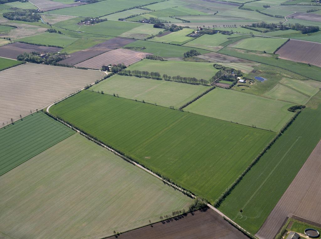 Efter landbrugspakken: Mere kvælstof bliver tilovers i landbruget