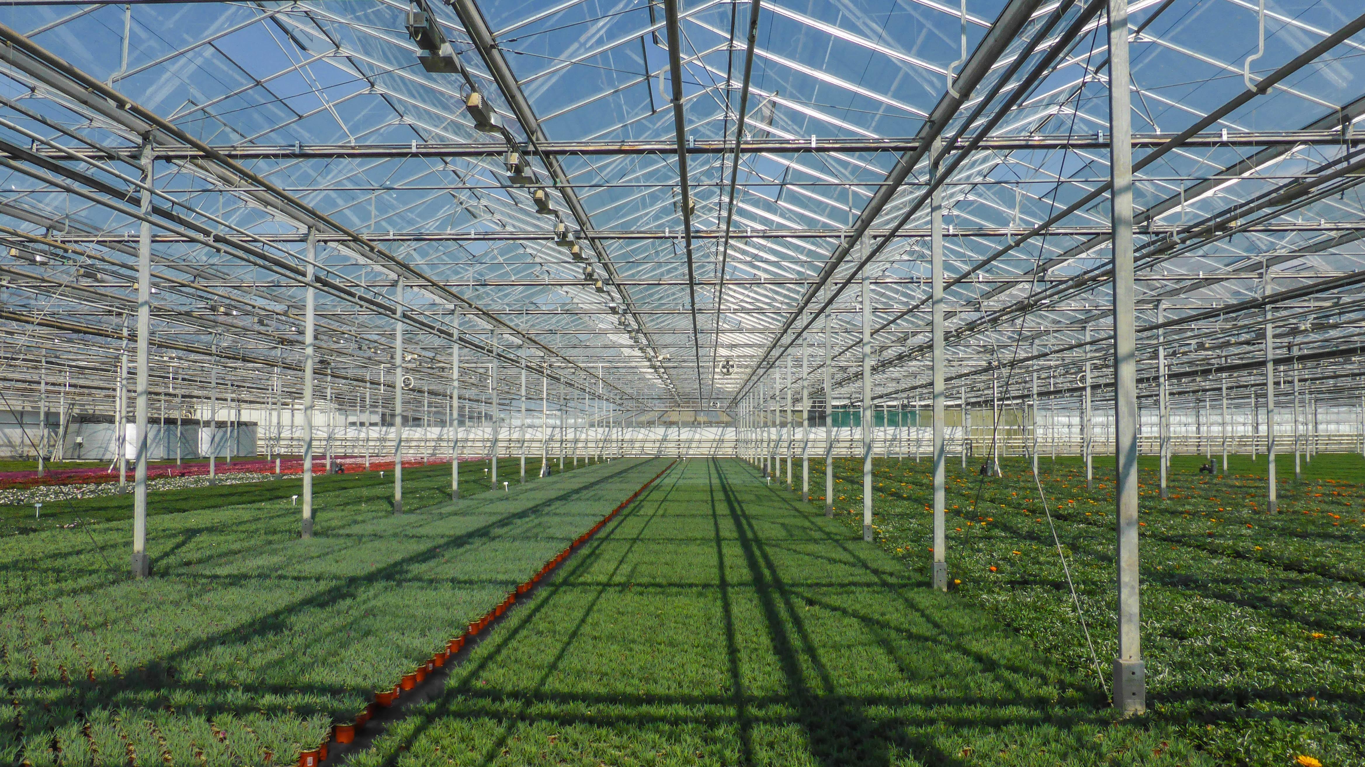 Ulovlige sprøjtegifte florerer bredt i landbruget