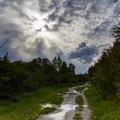 Amager Fælled: Et naturområde truet af løftebrud