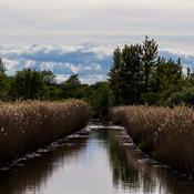 Vandløb, søer, grundvand og fjorde har brug for DIN underskrift