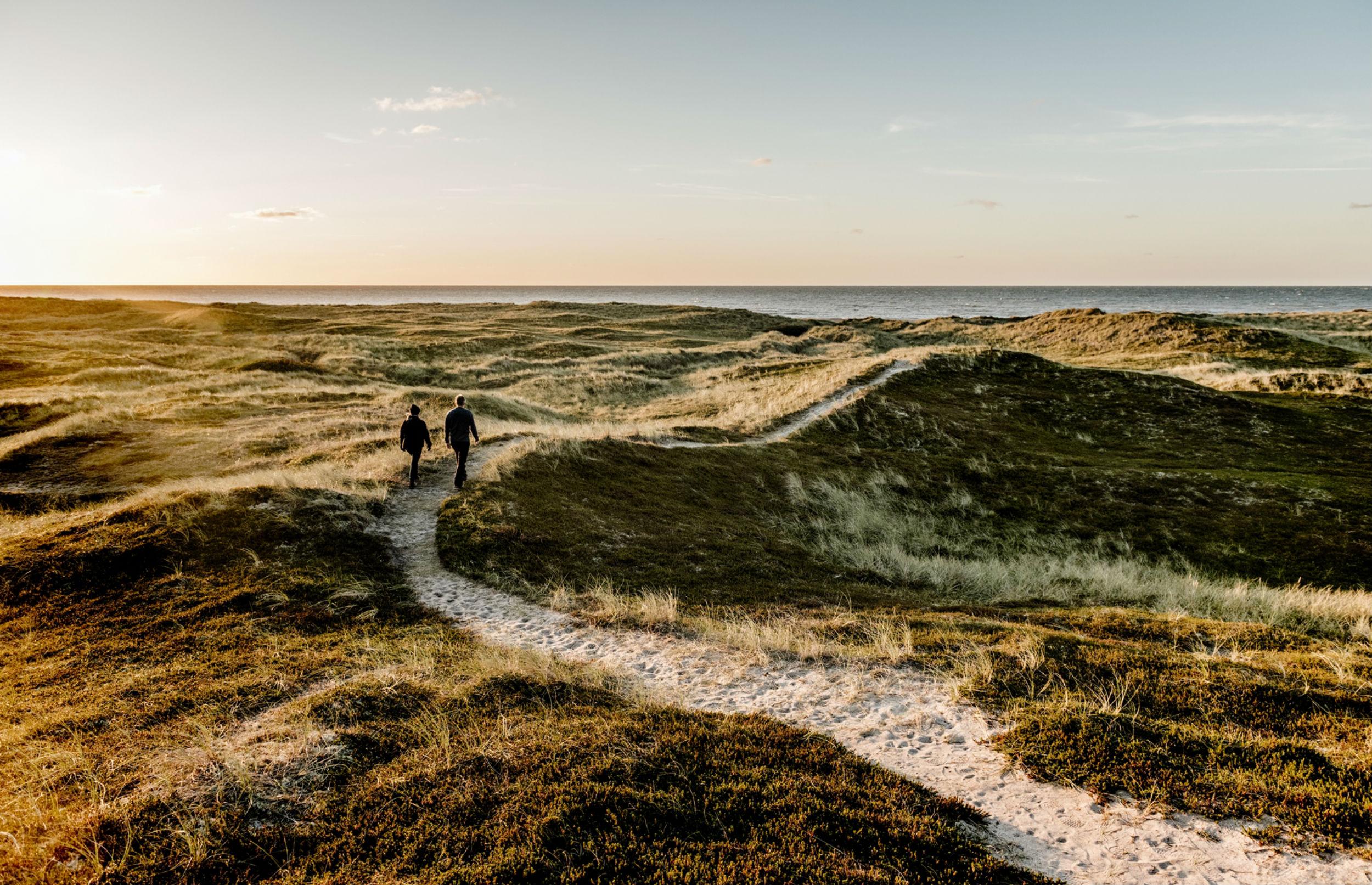 Nu kan du udpege Danmarks vigtigste naturskatte