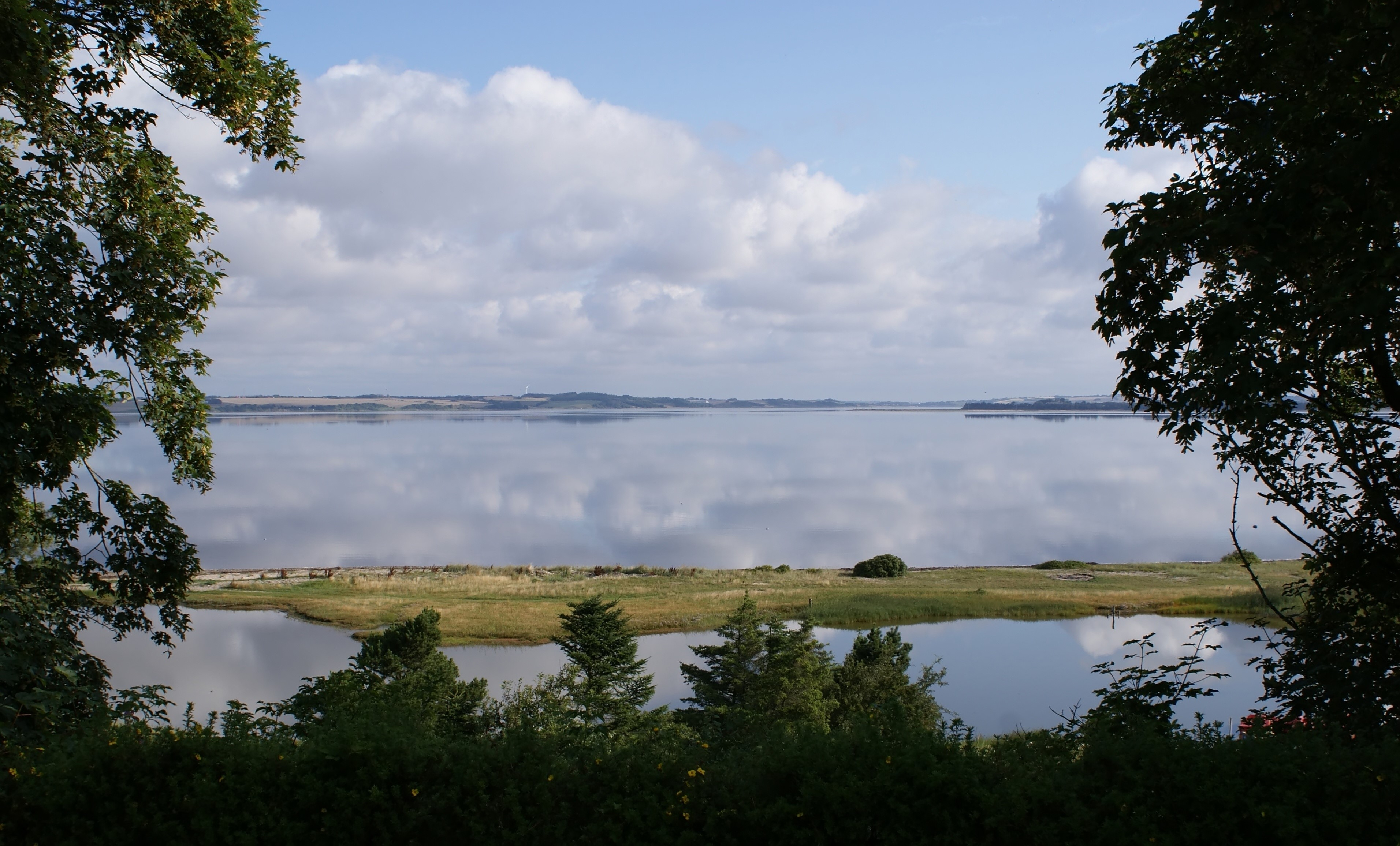 Ny rapport: Udbredt iltsvind i fjordene