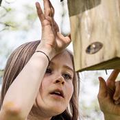 Mens skolerne har corona-lukket: 7 nemme naturaktiviteter for børnene