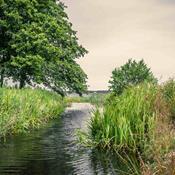 Trist angreb på beskyttelsen af små vandløb