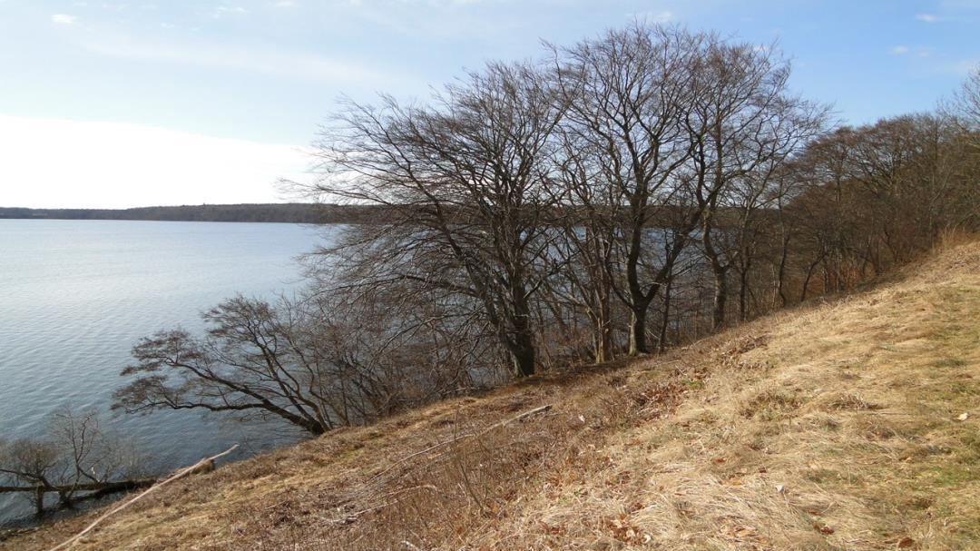 Tur til Høje Klint og Enghaven ved Furesøen