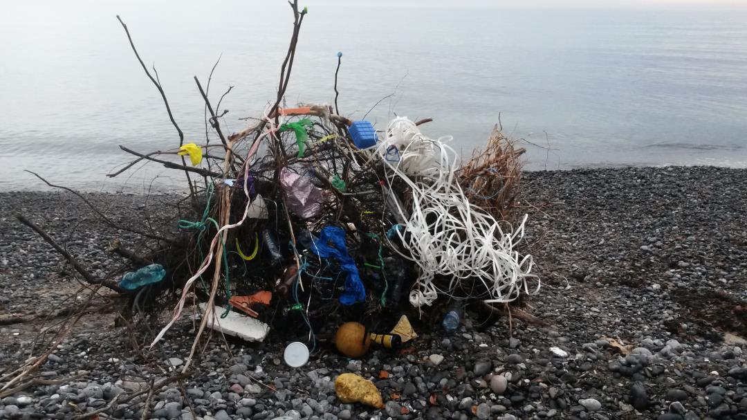 Vil du være med til at rydde op i naturen?