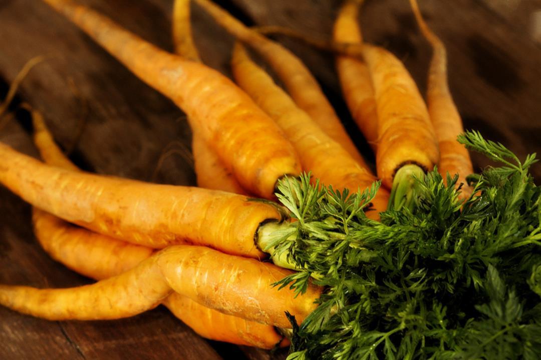 Fra græsplæne til giftfri gulerødder