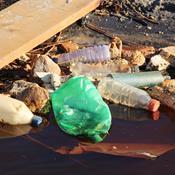 Rekordmange deltagere til årets affaldsindsamling