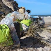 Affaldsindsamling i naturen: Sådan registrerer du dit affald