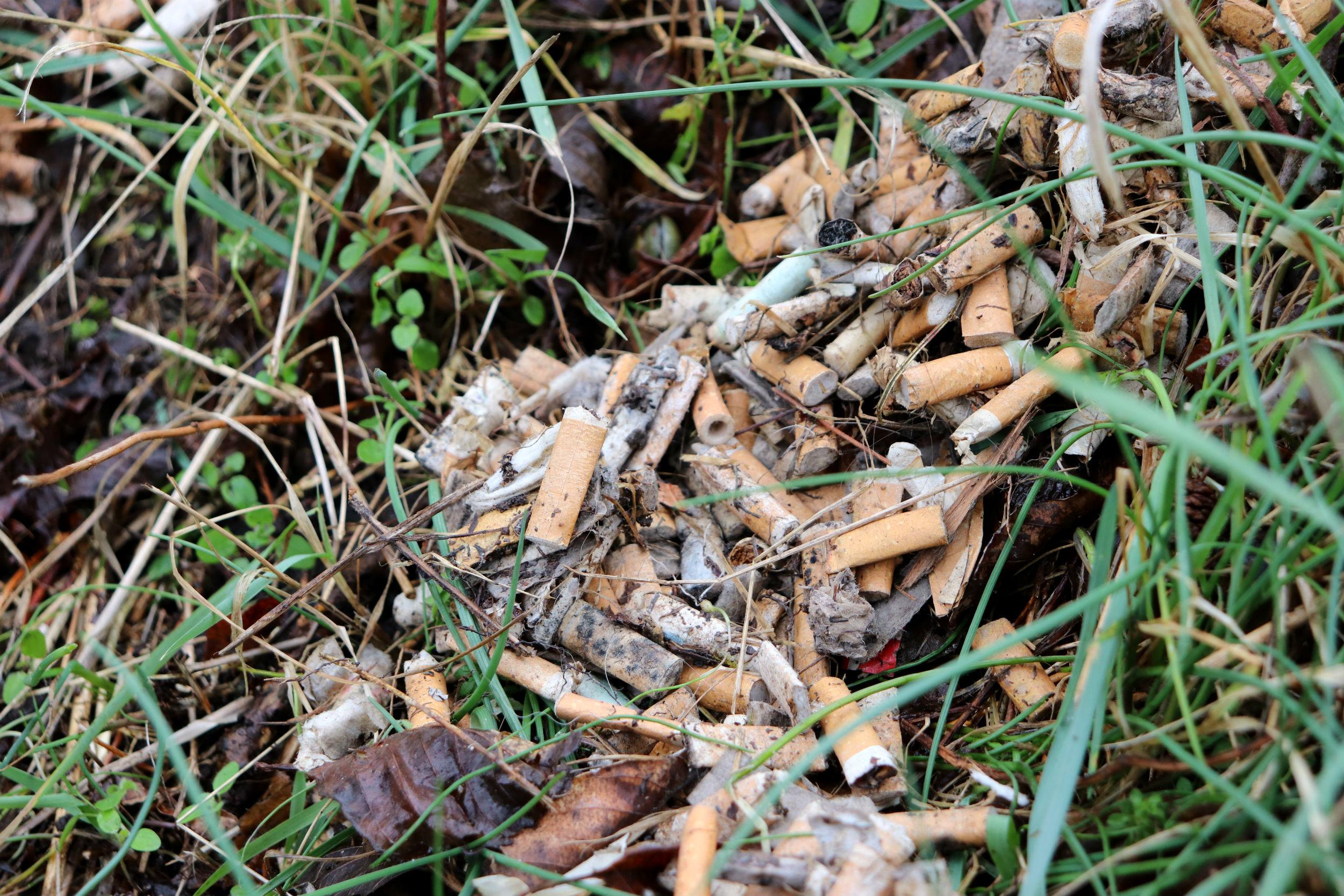 6 typer affald der oftest ligger og flyder i Danmark