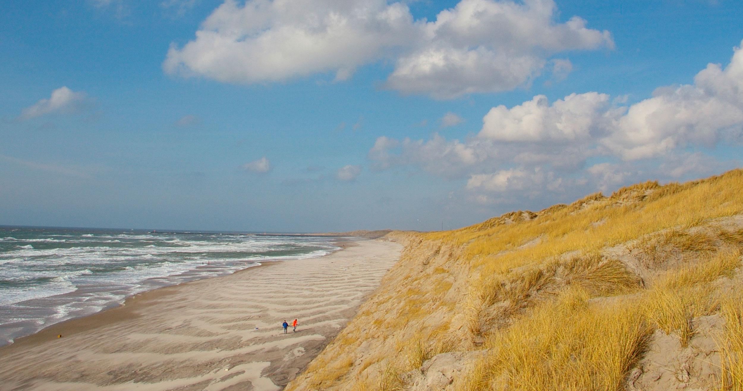 Borgerne og naturen lades i stikken i ny lov om kystsikring