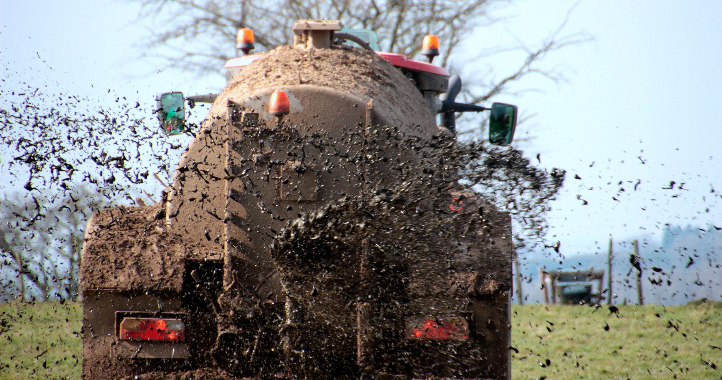 Ny regulering af landbruget kan give miljøgevinster