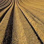 Landbrugspakke spænder ben for landbruget