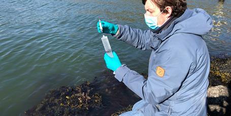 Citizen science-projekt knækker koden for fremtidens havovervågning