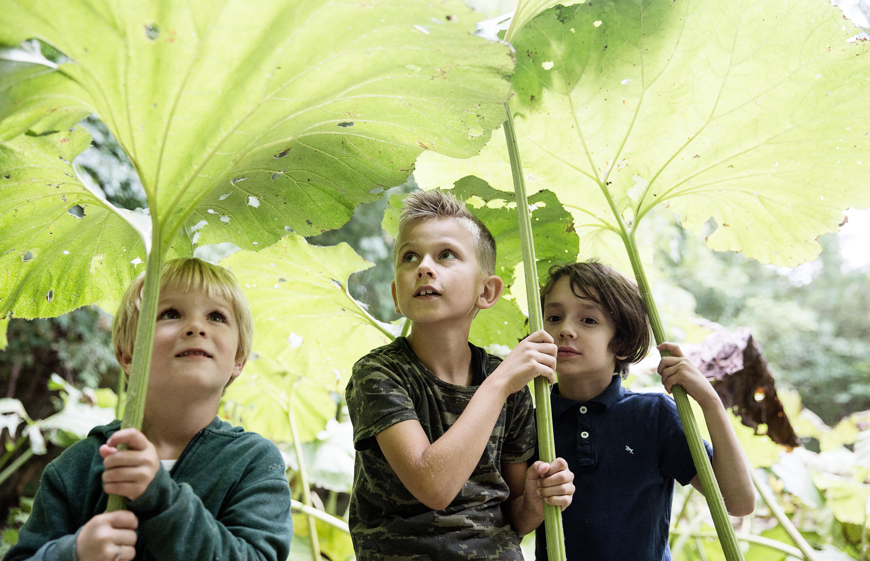 180.000 børn skal ud på Naturens Dag