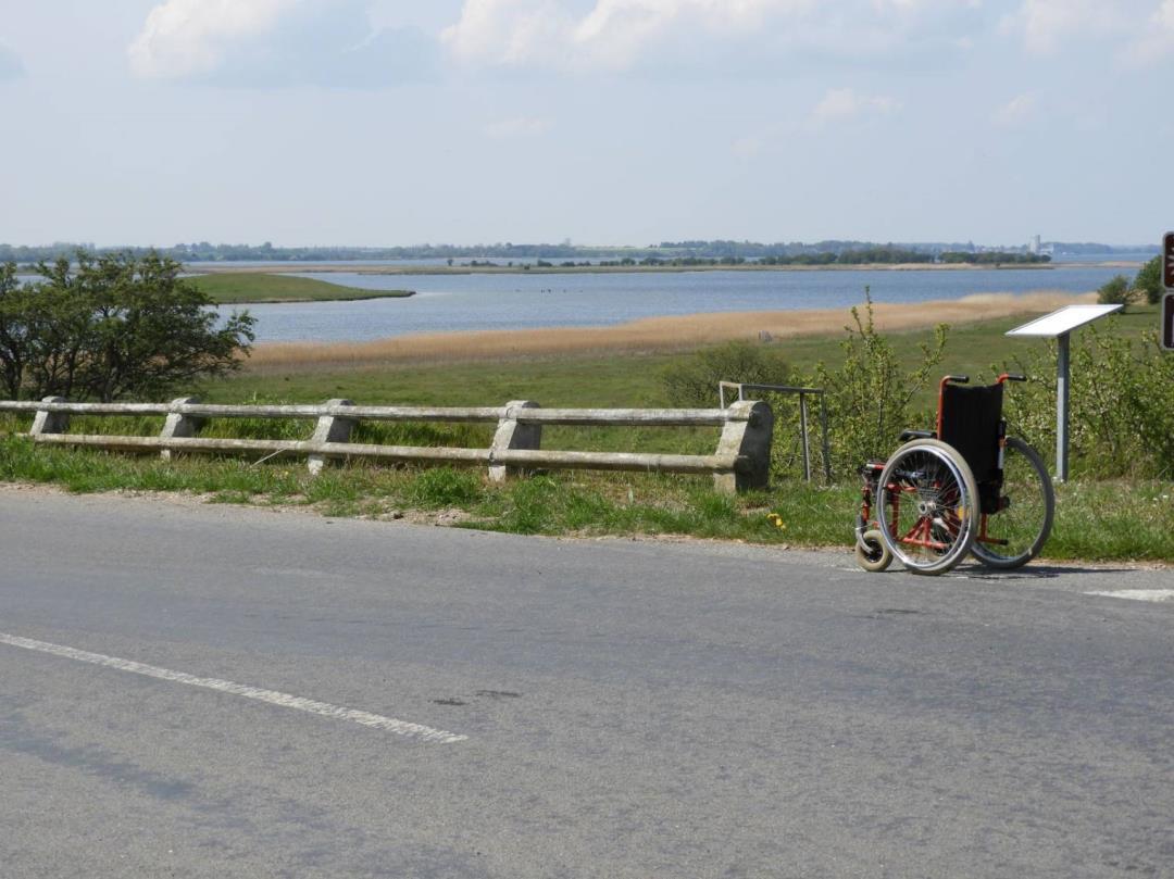 Indvielse af Handicap-Camønoen