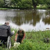 72-årige Bent vil se frøer: Etablerer vandhuller for egne penge