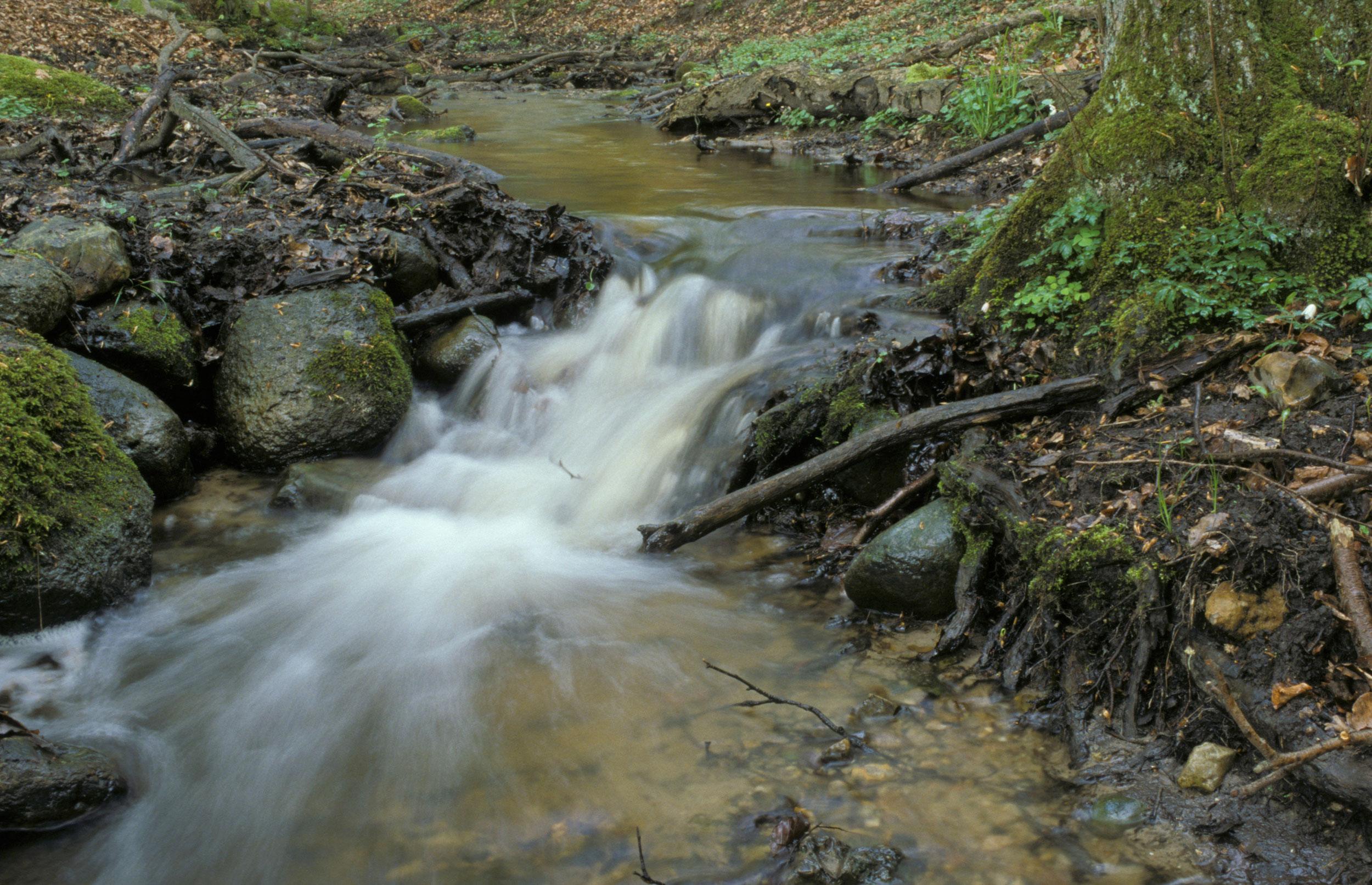 Forskere: Vandmiljø markant forringet