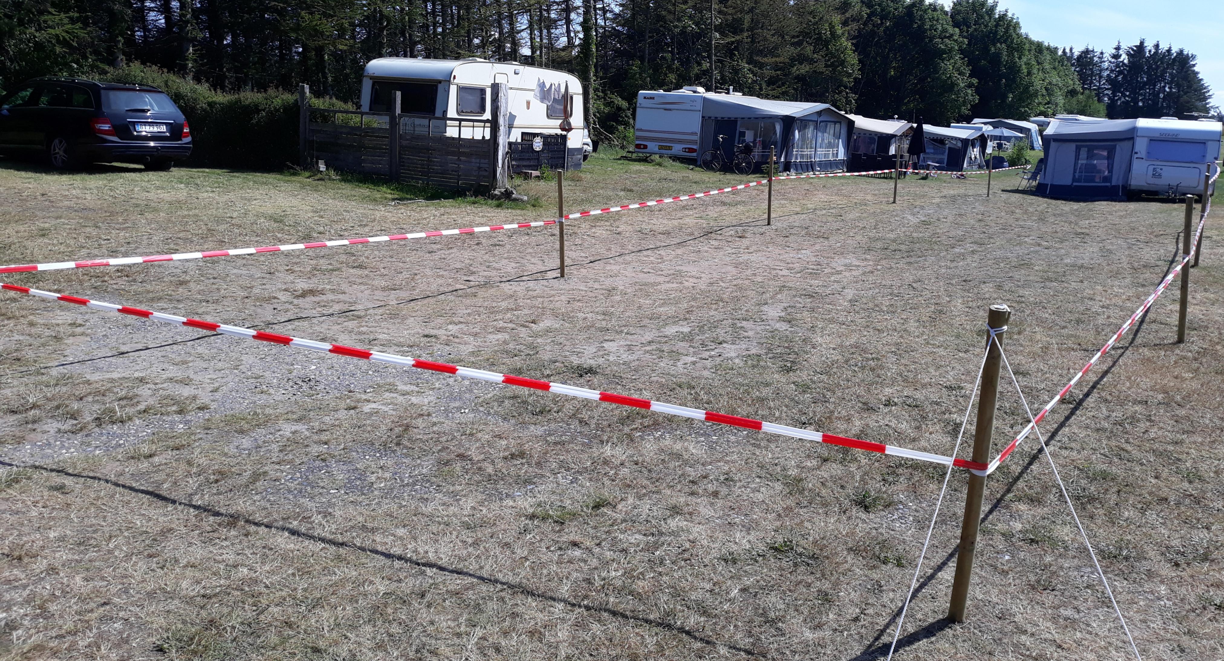 Buksebier fik deres eget areal på campingplads: De skal have fred til at grave
