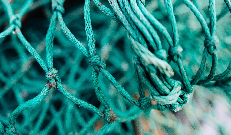 Trods advarsler: Regeringen vil fortsætte med høje fiskekvoter