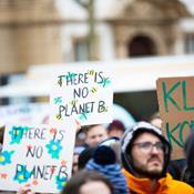 Ny rapport: Danmarks grønne energi kan være sort som kul
