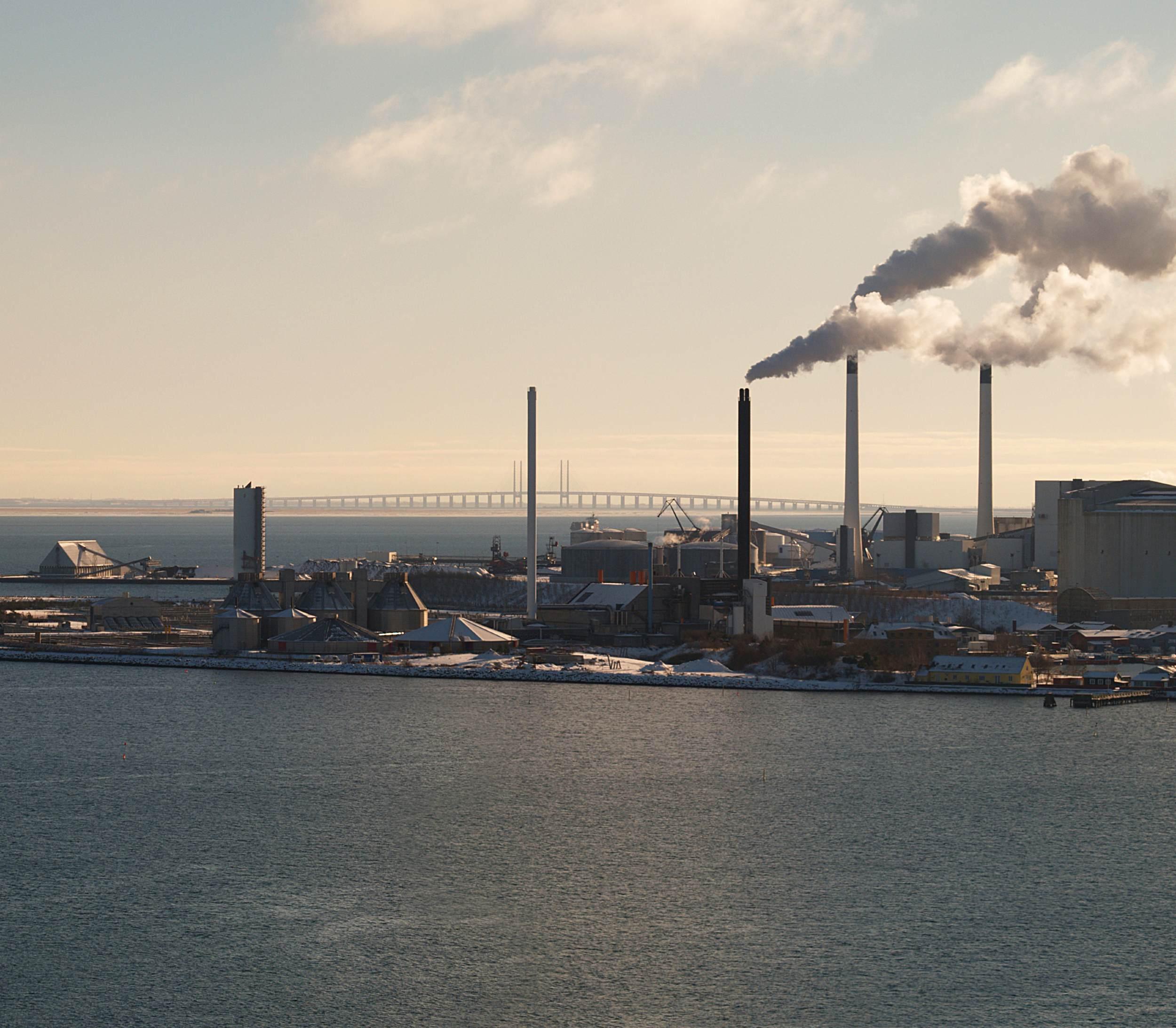 Træflis fra Amazonas bør ikke brændes i danske kraftvarmeværker