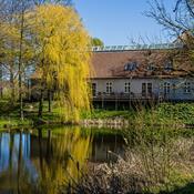 Skovsgaard Gods: Sov, spis og gå på opdagelse i Langelands naturparadis