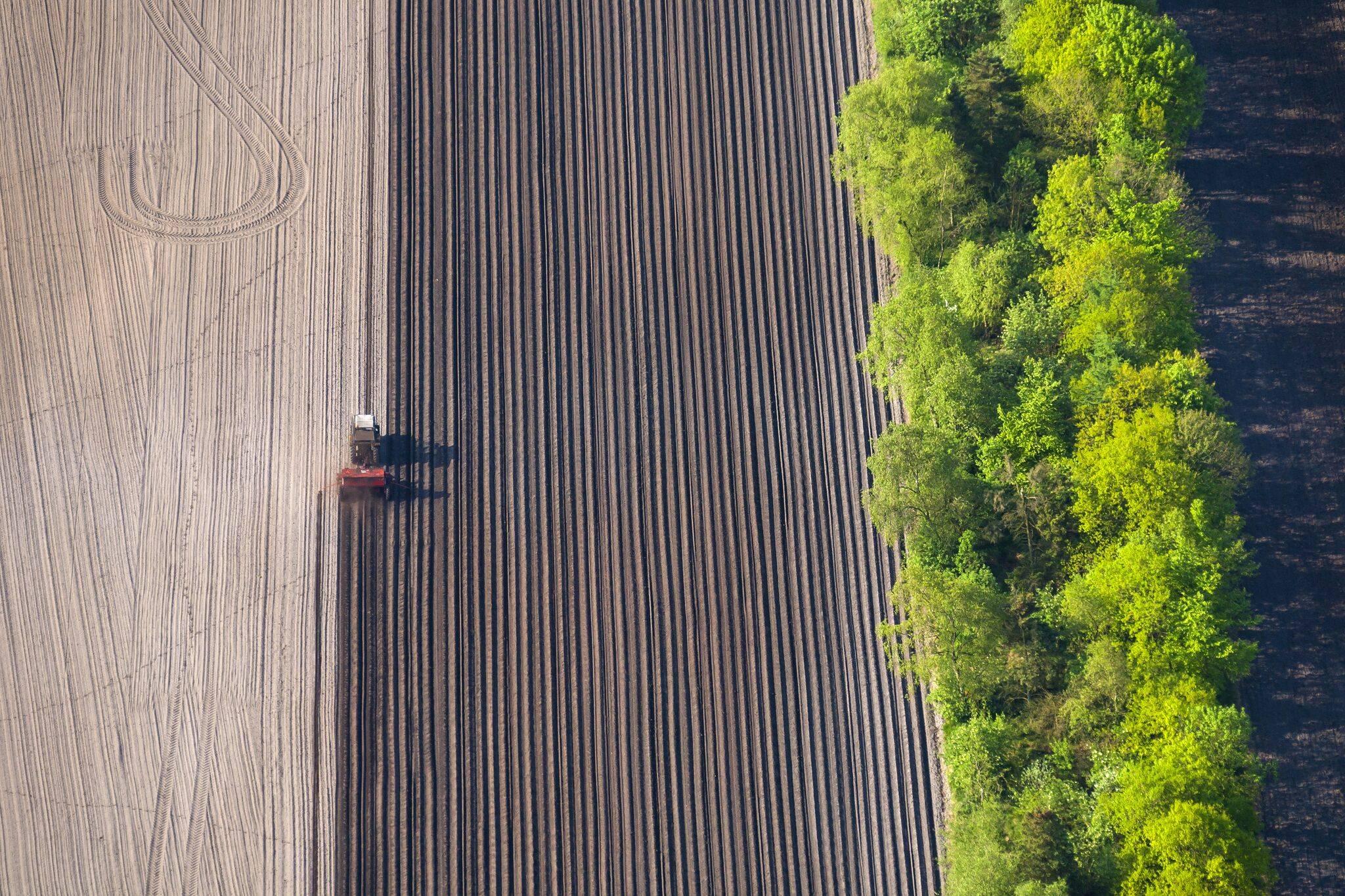 Ny EU-rapport: Danmark skraber bunden i at beskytte naturen