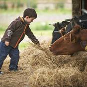 Landbrugspakken: Angrebet mod miljødelen skudt i gang
