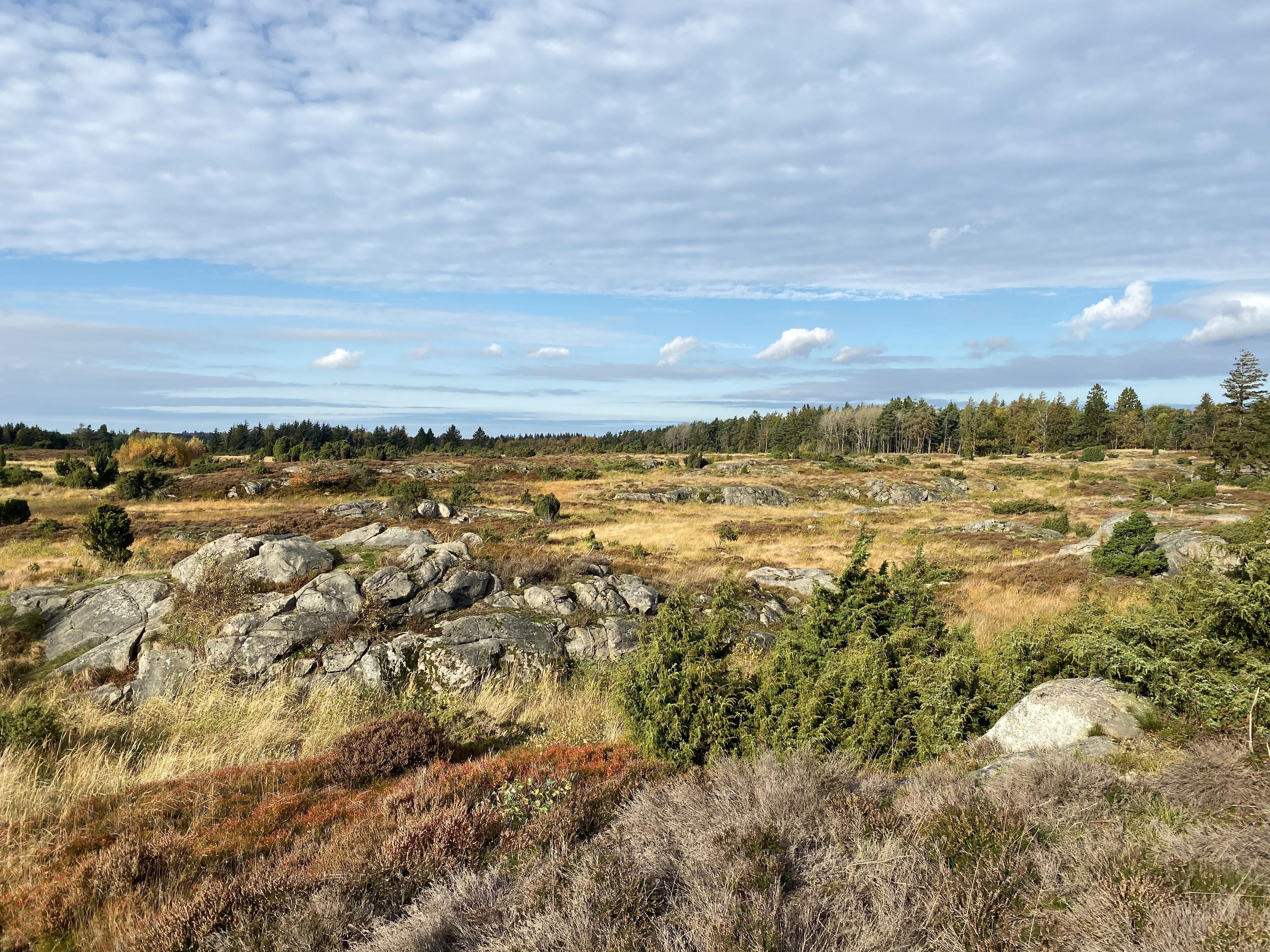 Oplev den Bornholmske natur