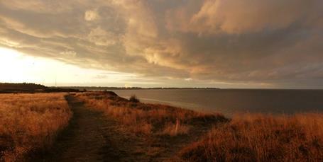 Ambitiøs fredning skal hjælpe naturen i sjællandsk kommune