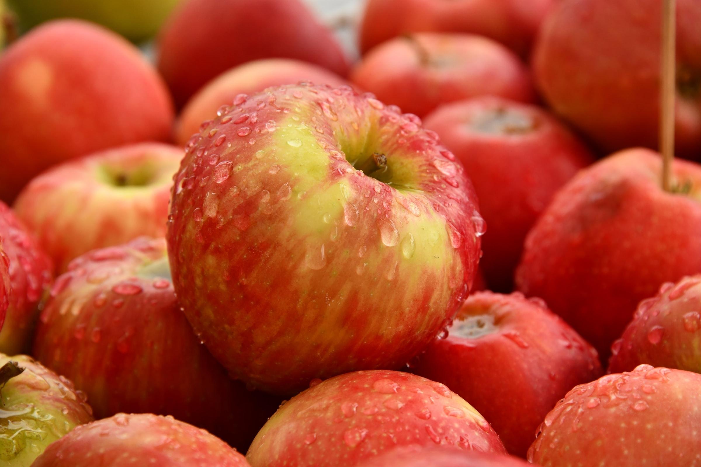 9 fødevarer er kilde til over 60 % af sprøjtegiftrester i kroppen
