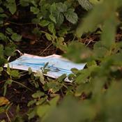 Mundbind og grænsedåser flyder: Så meget blev der fundet på Affaldsindsamlingen