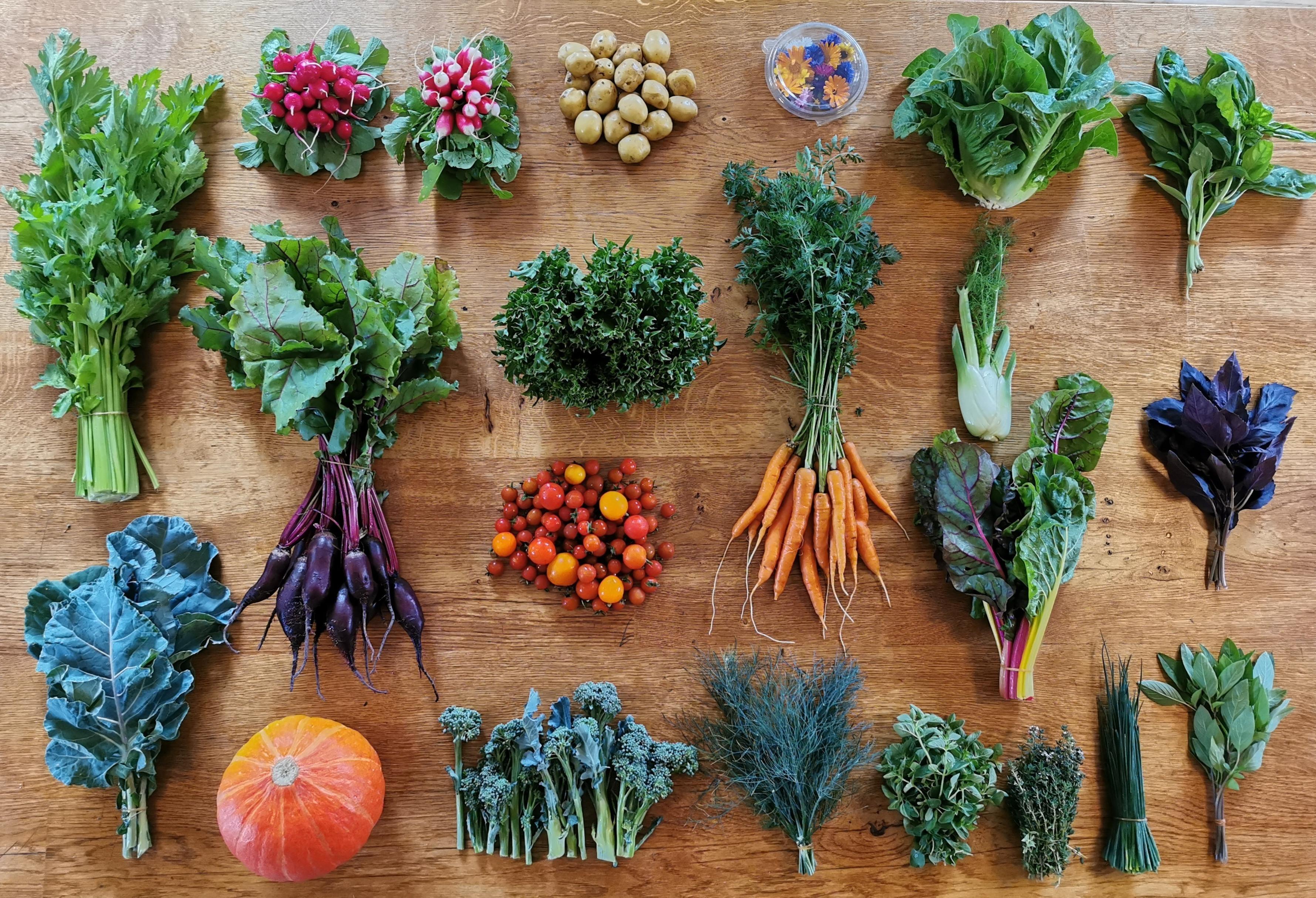Ny rapport: Landbrug skal producere mere føde til mennesker og mindre foder til dyr
