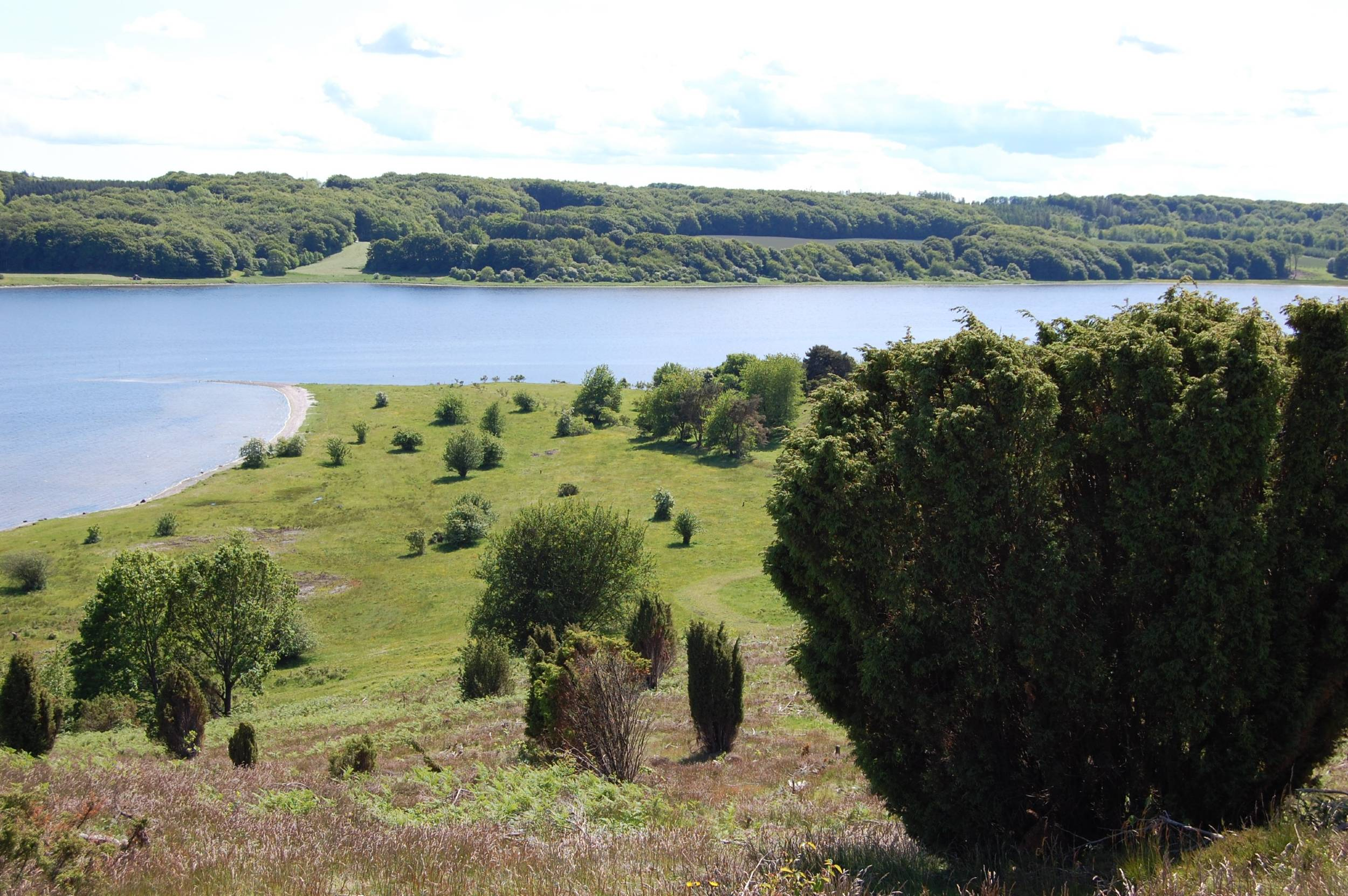 Bakkelandet omkring Kielstrup Sø er fredet