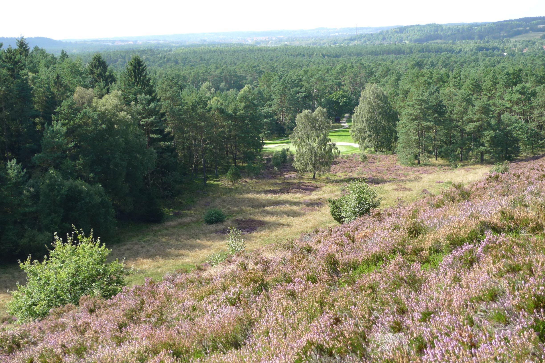 Ny fredning sikrer naturskønt område i Silkeborg