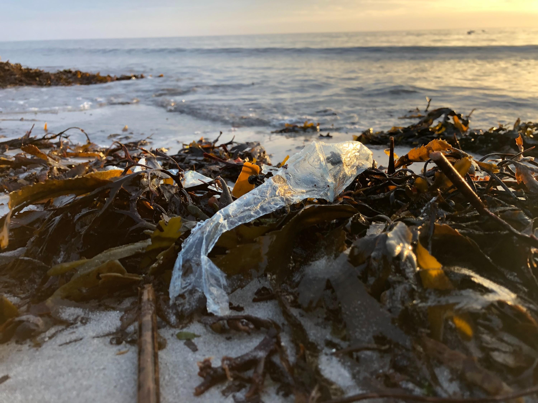 DI og DN i fælles udspil: Mængden af affald skal ned
