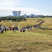 Byggeri eller biodiversitet? Københavnerne vil beskytte naturen på Amager Fælled