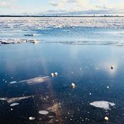 Kan havet fryse til i Danmark igen?