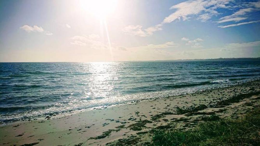Nyborg hopper i havet udsat til 22.aug.2021