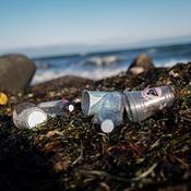 Se kortet: Så meget affald blev der fundet i din kommune til Affaldsindsamlingen