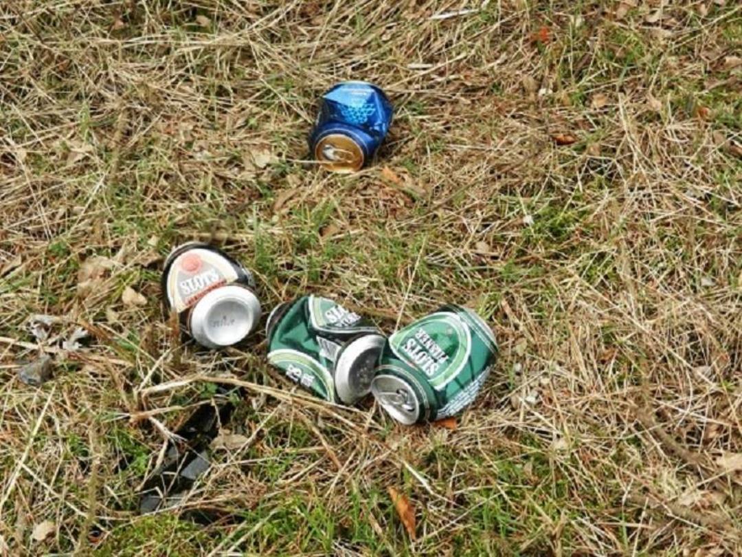 Affaldsindsamling i Brørup