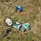Affaldsindsamling i Rødding