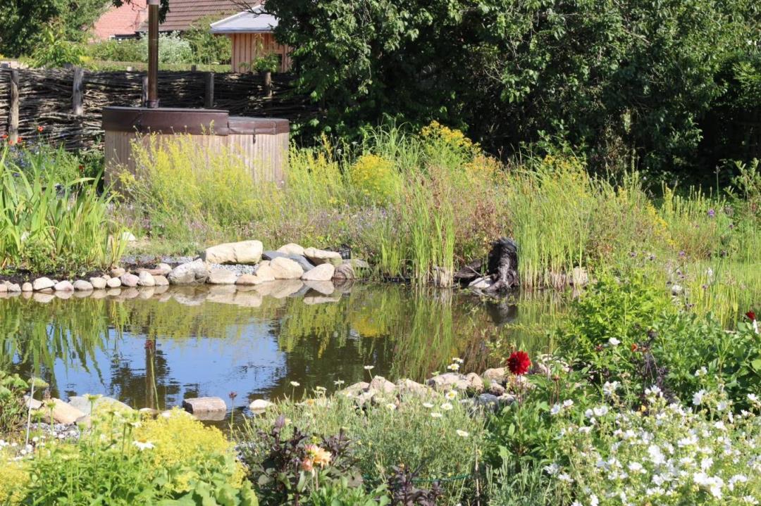 Åben Have - naturhave i Saksild
