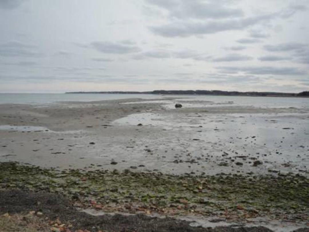 Strandsten ved Gilbjerghoved