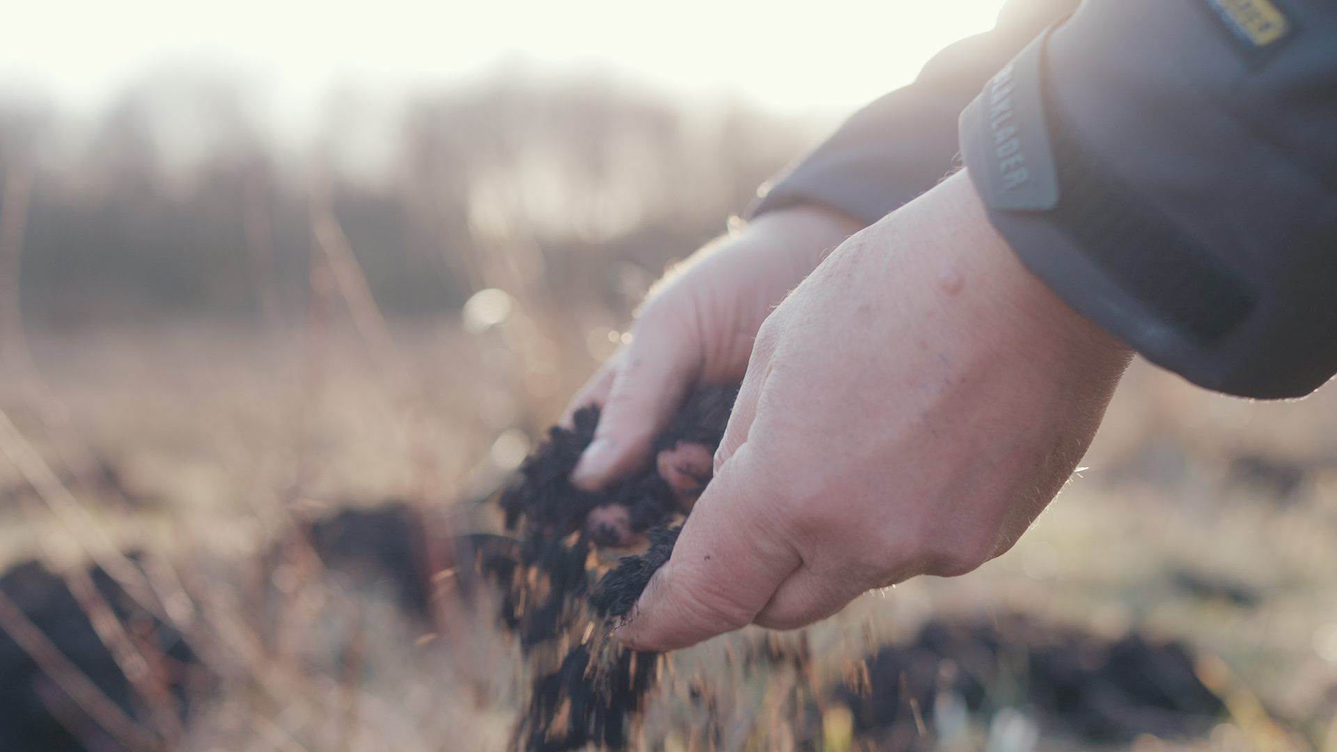 Kvægbonde: Jorden synker - så lad os nu tage den ud af drift og få naturen tilbage!