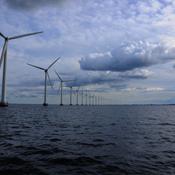 Danmarks Naturfredningsforening lukker for Klimakommune-kampagne