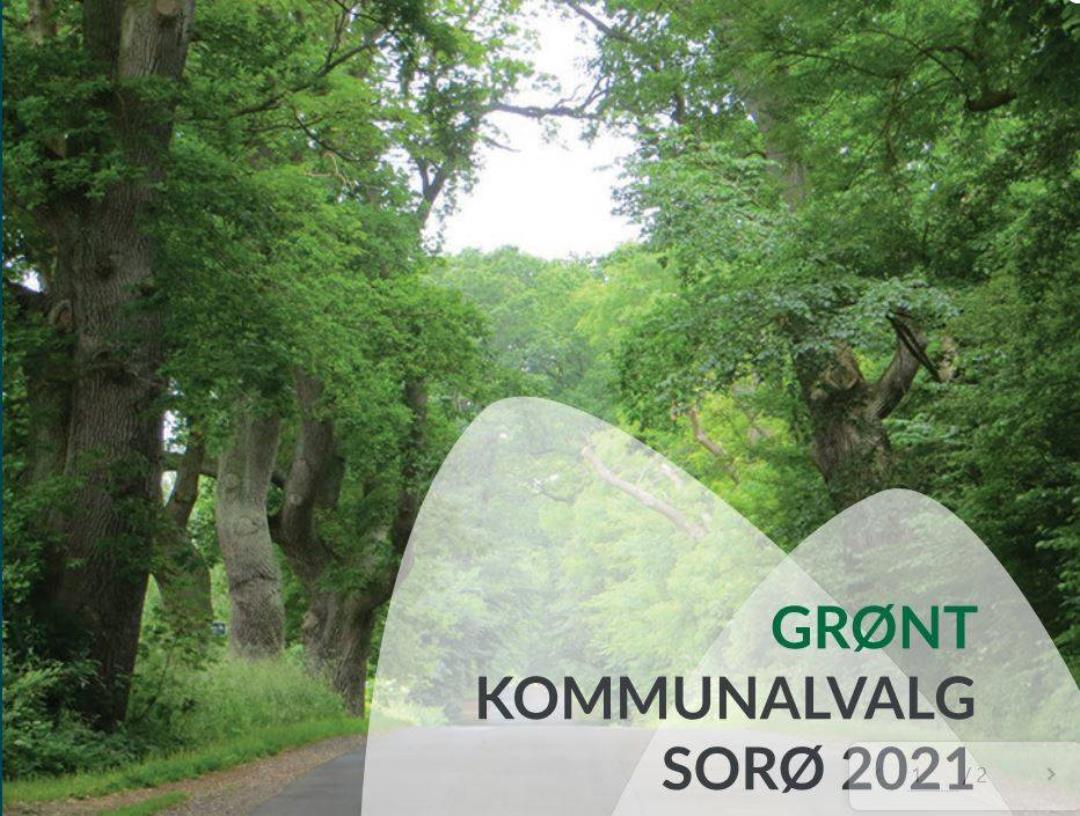 Vælgermøde Sorø